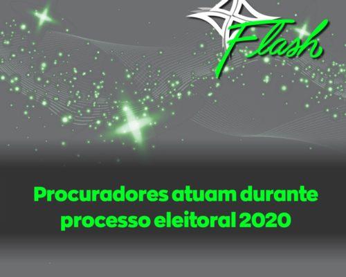 Procuradores atuam durante processo eleitoral 2020